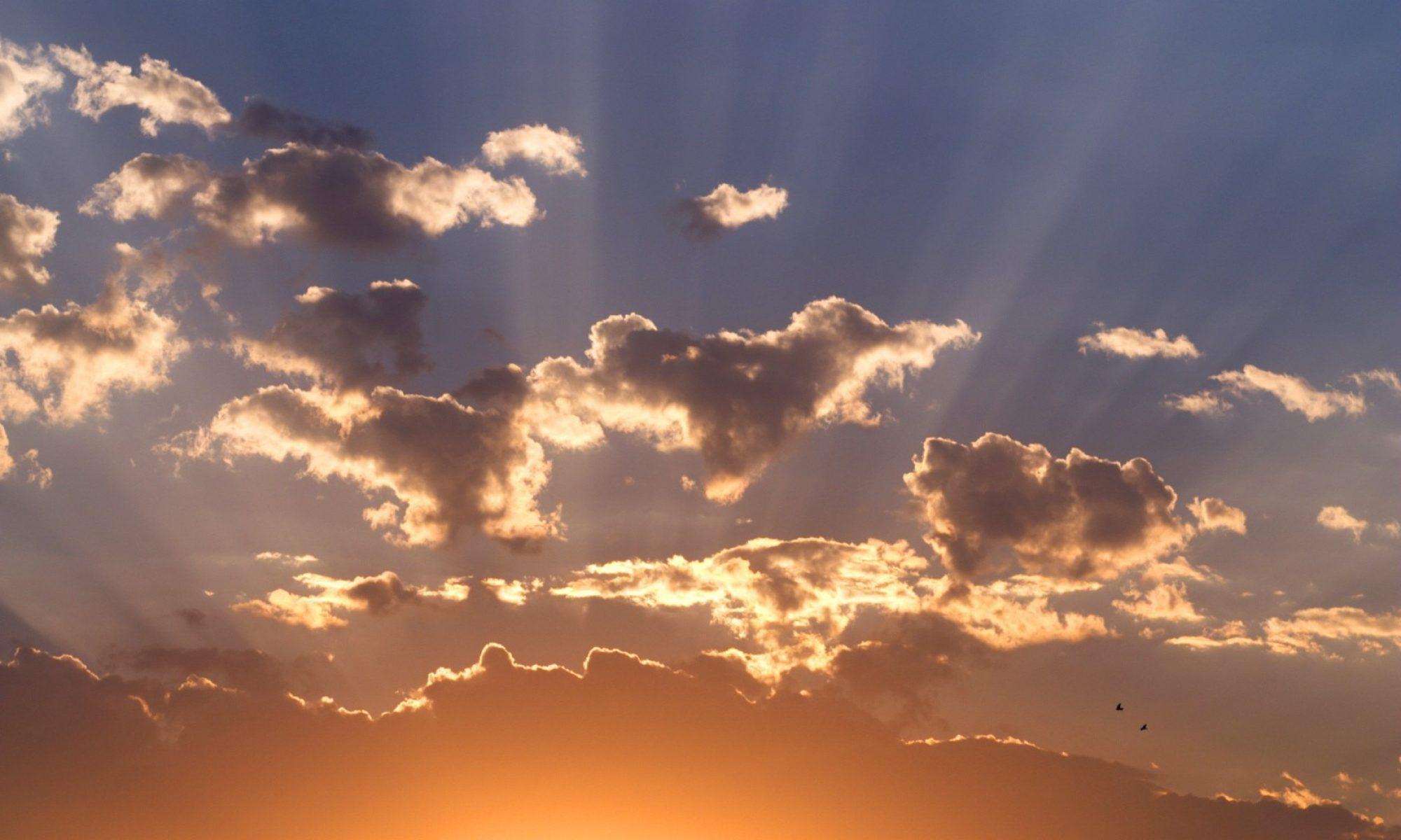 A Bright Dawn
